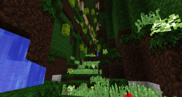 forestcave2