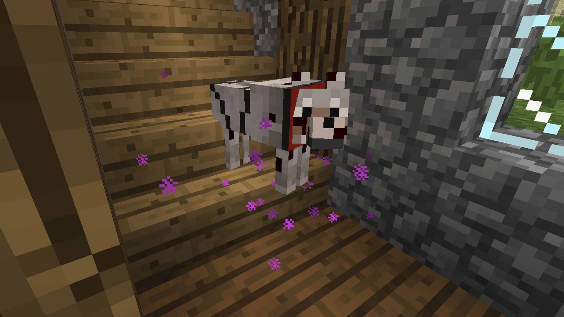 Minecraft How To Make A Cute Cat Bed