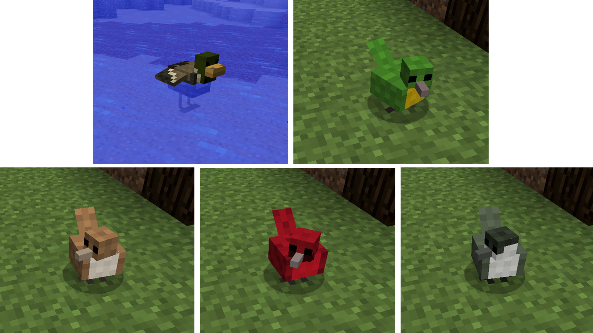 Cute animals mod - Animals