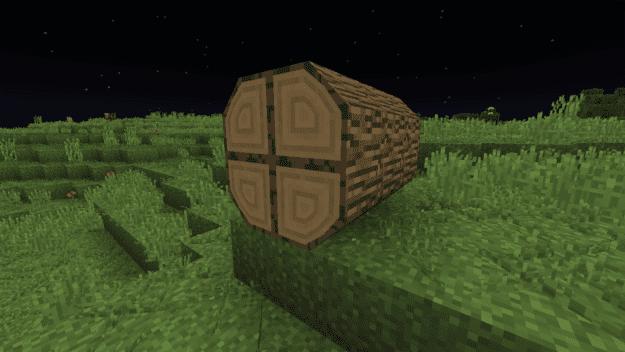 big-log